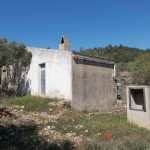 Pretty olive grove with casita of 45m2. Ref:R716 at El Perello for 49000